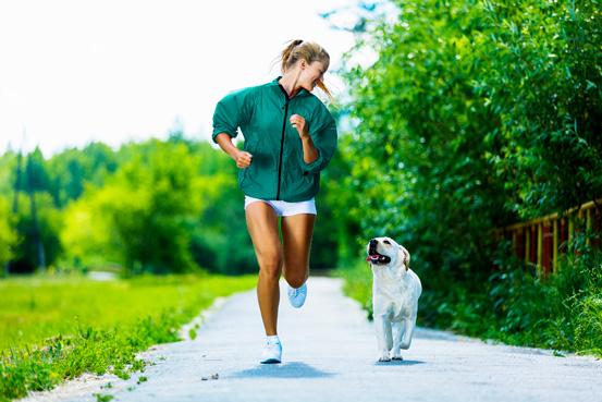 exercicio-cachorro-blog
