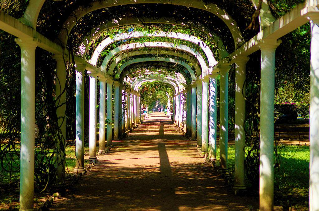 início da primavera 2018, jardim botânico rj
