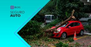 seguro auto cobre danos natureza